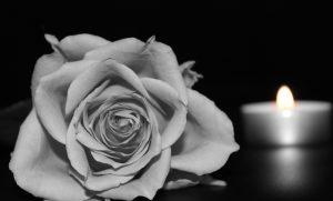 Rose and tea light